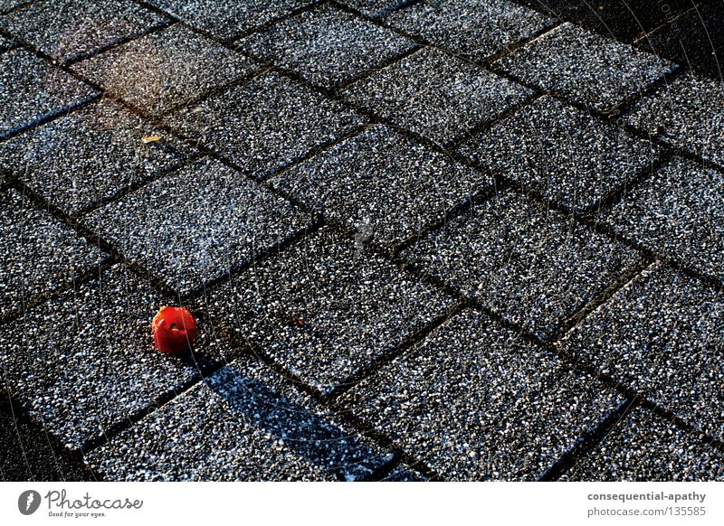 Red Black Gray Fruit Asphalt Trash Apple Traffic infrastructure