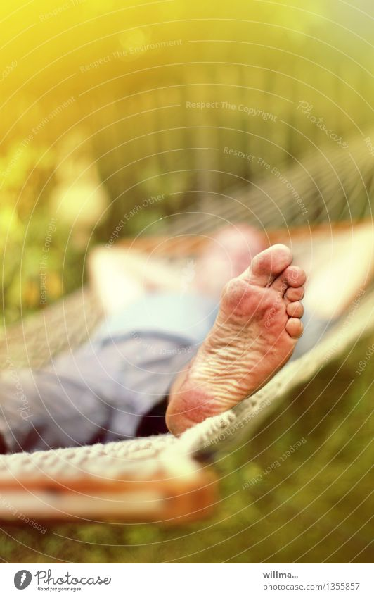 Human being Summer Relaxation Feet Toes Restful Summery Hammock To swing Sole of the foot