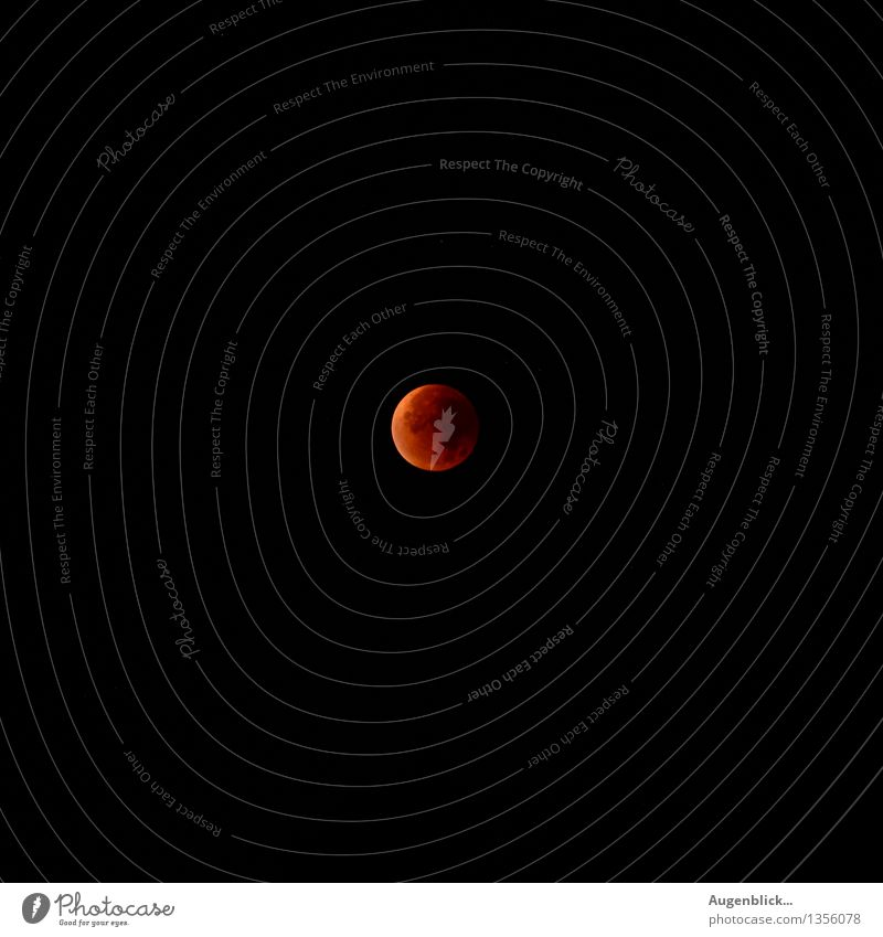 Red Calm Far-off places Black Autumn Above Glittering Orange Wait Large Beautiful weather Round Infinity Surprise Cloudless sky Moon