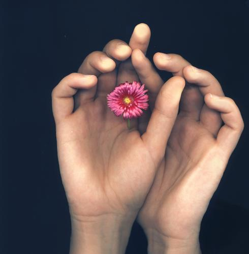 ..fleur Hand Fingers Flower Blossom Touch Emotions Scanner Intuition Vessel Fingerprint Photographic technology scan type fingertips Rachis Colour photo