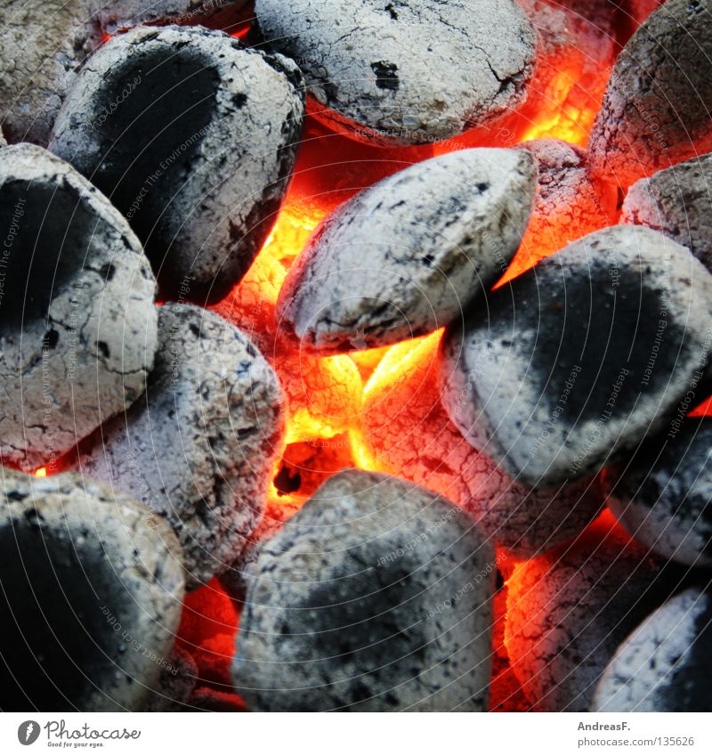 Red Summer Nutrition Warmth Blaze Dangerous Physics Gastronomy Hot Coal Barbecue (event) Burn Barbecue (apparatus) Glow Ashes Embers
