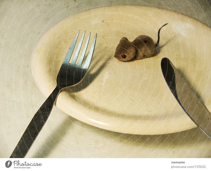 Emotions Gray Brown Fear Nutrition Toys Appetite Anger Plate To feed Mouse Distress Meat Cutlery Surrealism Knives