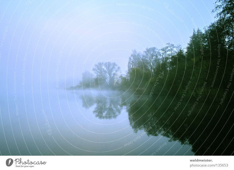 Fog at the lake Blue Green Lake Body of water Sky Tree Reflection Morning Twilight Morning fog Autumn Cold Mystic Romance Calm Fishing (Angle) Water Dawn