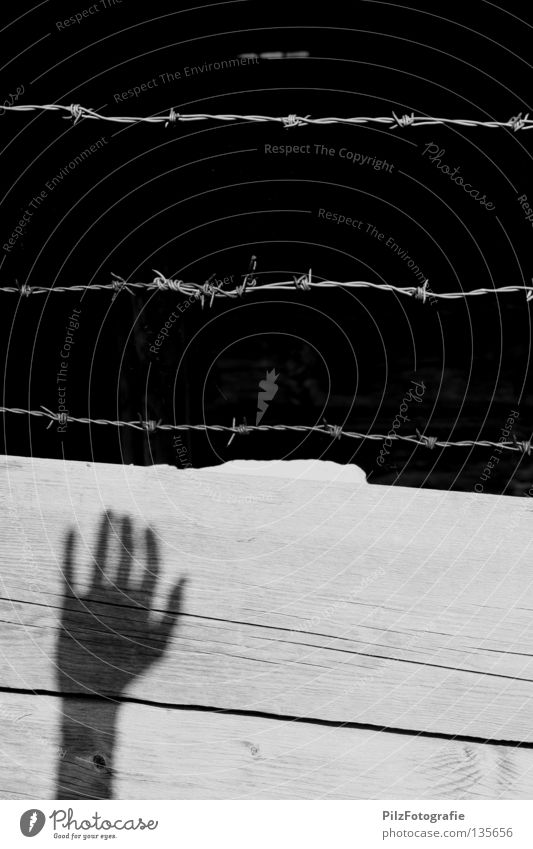 White Hand Black Wall (building) Wood Wall (barrier) Death Freedom Fear Dangerous Fence Hut Pain End Wooden board War