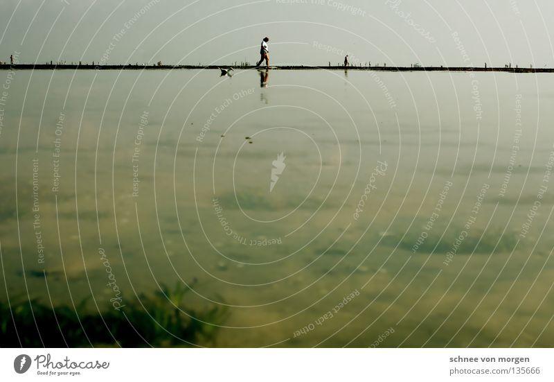 Human being Sky Blue Water Green Plant Ocean Beach Sand Lake Horizon Island North Sea Seagull Mud flats High tide