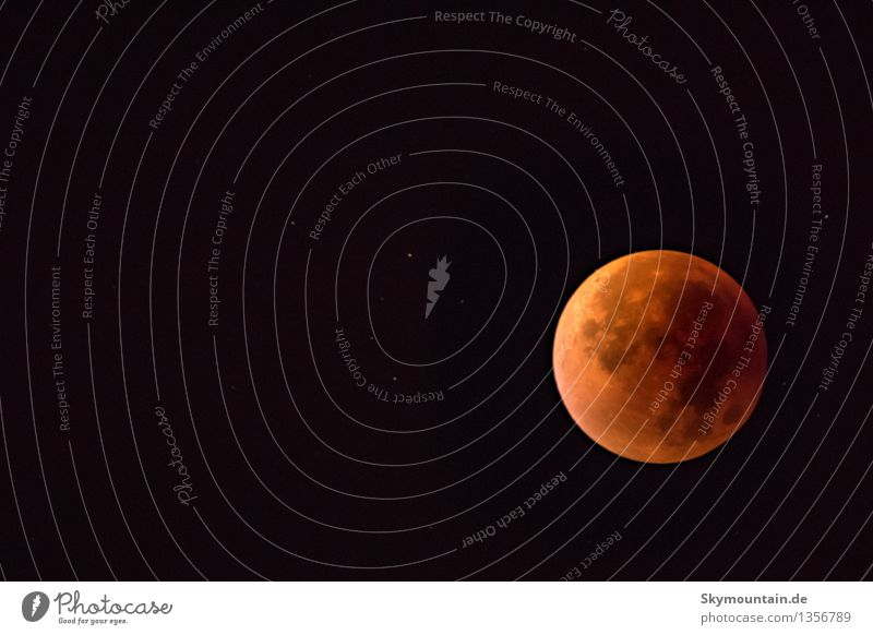 Lunar Eclipse September 2015 Style Design Happy Environment Nature Sky Stars Moon Lunar eclipse Autumn Beautiful weather Esthetic Exceptional Elegant Fantastic
