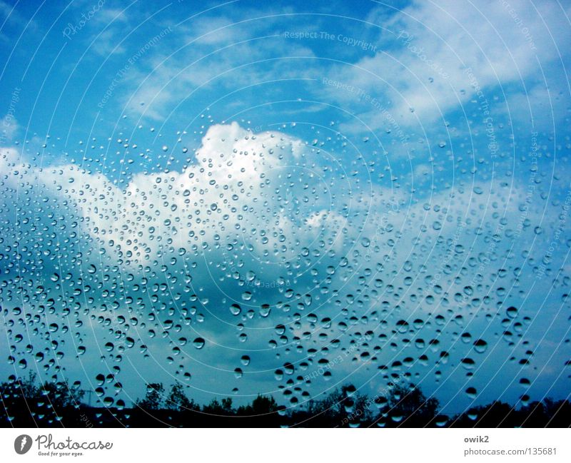 Sky Nature Water Clouds Window Rain Horizon Weather Glass Wet Drops of water Transience Transparent Treetop Window pane Roll