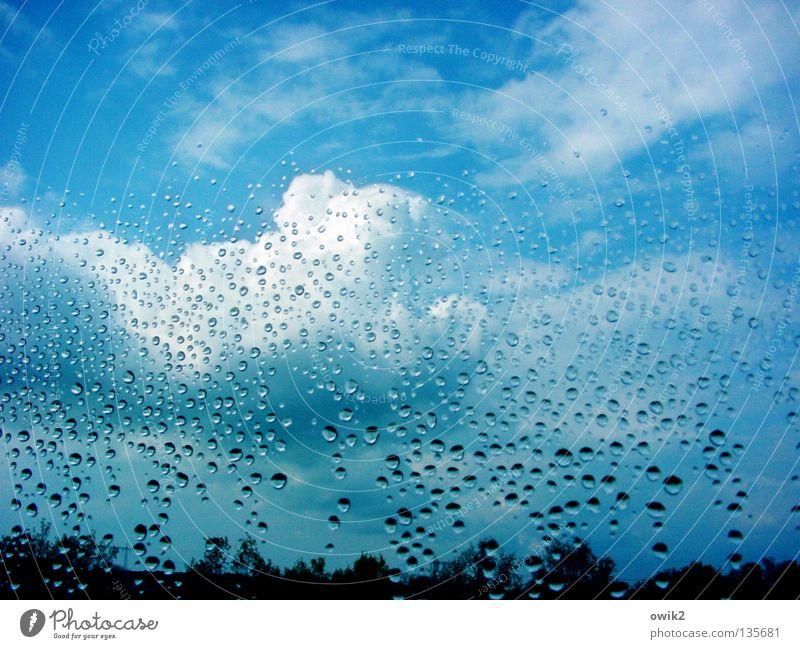 Sky Nature Water Clouds Window Rain Horizon Weather Glass Wet Drops of water Transience Transparent Treetop Window pane Roll