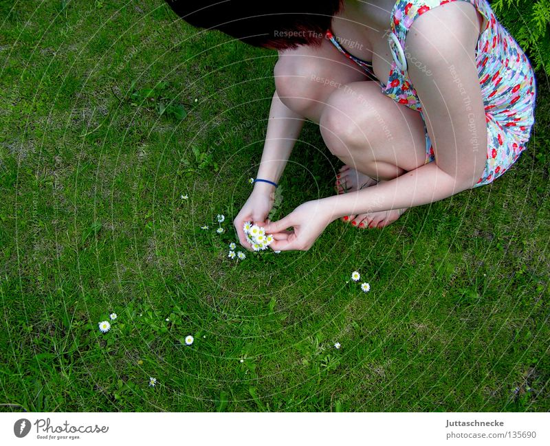 Biological weed killing Woman Flower Meadow Summer Spring Dreamily Daisy Think Crouch Beautiful weather Flower power Hippie Duck down Romance Lawn ponder Garden