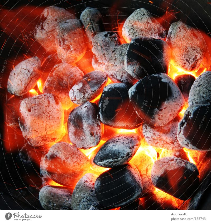 Red Summer Joy Nutrition Warmth Blaze Coal Dangerous Physics Gastronomy Hot Barbecue (event) Burn Flame Barbecue (apparatus) Glow