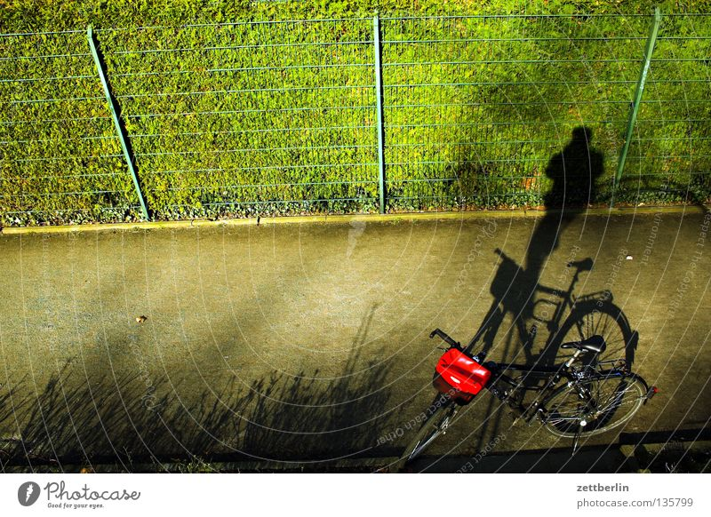 shadow-wheeler acrobat Bicycle Park Green Recreation area Leisure and hobbies Playing Cycling tour Commute Fence Garden fence Wire fence Wire netting fence