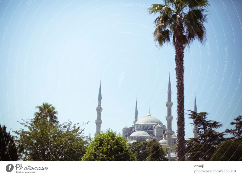 Istanbul Nature Beautiful weather Town Capital city Mosque Tourist Attraction Exceptional Near and Middle East Tourism Vacation & Travel Travel photography