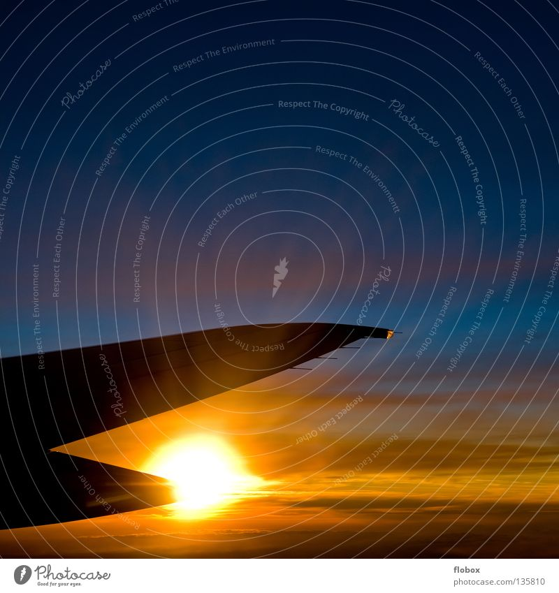 Sky Sun Vacation & Travel Clouds Colour Cold Window Warmth Air Ice Bright Airplane Blaze Aviation Logistics Physics
