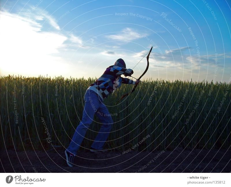 Human being Sky Blue White Green Red Sun Clouds Yellow Field Observe Beautiful weather Violet Grain Hunting Arrow