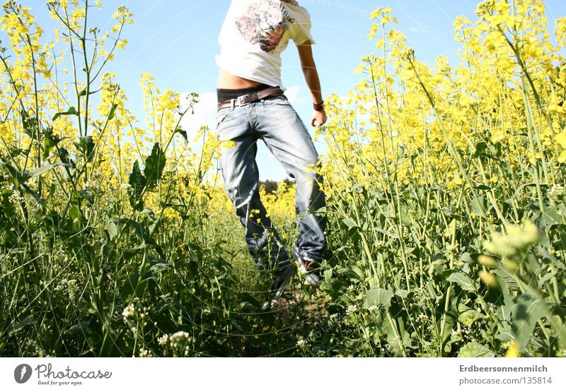 Headless into the world Man Oilseed rape oil Summer Field Jump Green Showing one's bellybutton Fantastic Joy Guy flower field jeands Freedom Blue Sky Blue sky