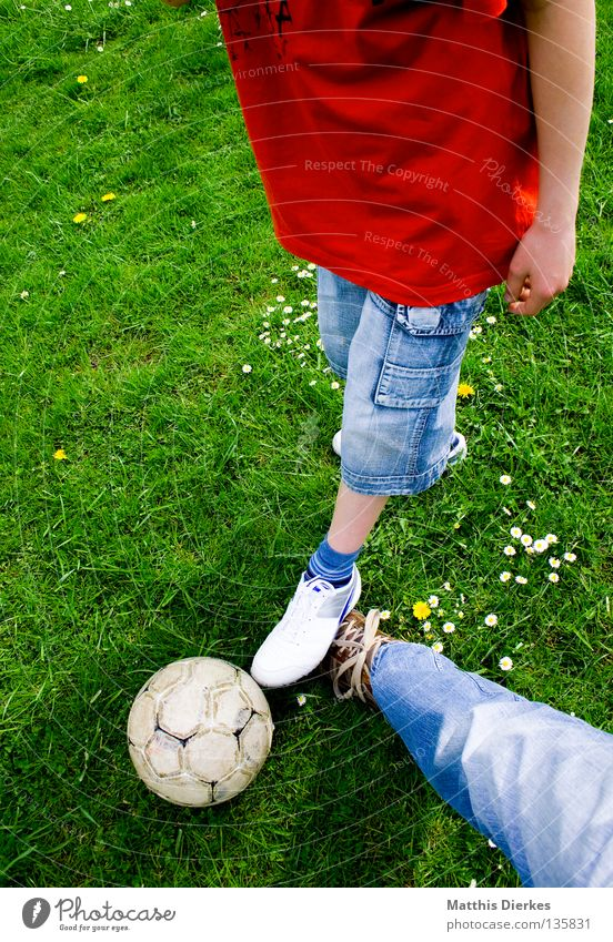 straddling Ball sports Summer Meadow Daisy Plant Green Green undertone Pants Jeans Footwear Leather shoes Soccer Leisure and hobbies Spontaneous Sports Air Duel