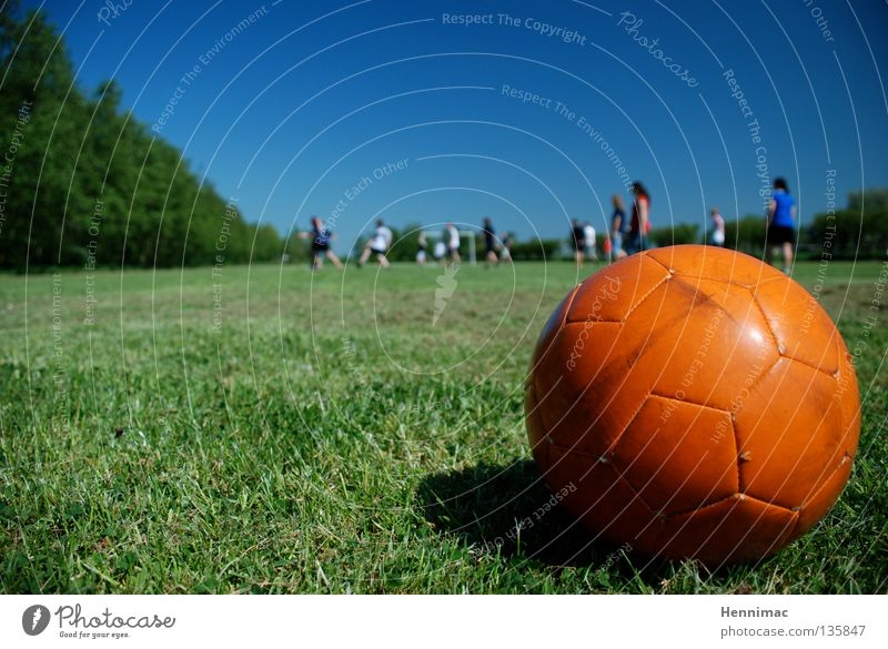 Youth (Young adults) Green Blue Summer Sports Meadow Playing Soccer Orange Ball Lawn Beautiful weather Football pitch Shoot
