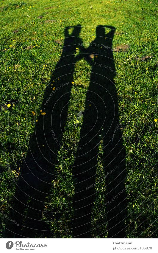 Well, who's taking the picture? :D Sustained Long Wide angle Crossed Meadow Flower Daisy Dandelion Trust Summer Couple Sun Evening Shadow Arm Back Interlock