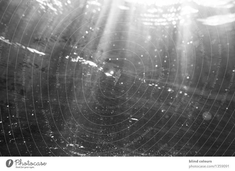 pègre Art Work of art Esthetic Sea water Underwater photo Underwater camera Underwater plant Surfing Waves Light Light (Natural Phenomenon) Flare