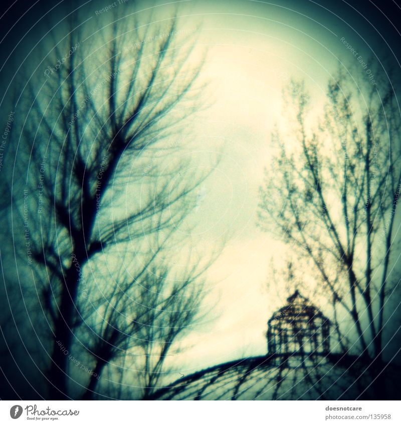 Old Tree Dark Building Creepy Derelict Decline Ruin Section of image Domed roof Steel carrier Tumbledown Steel construction