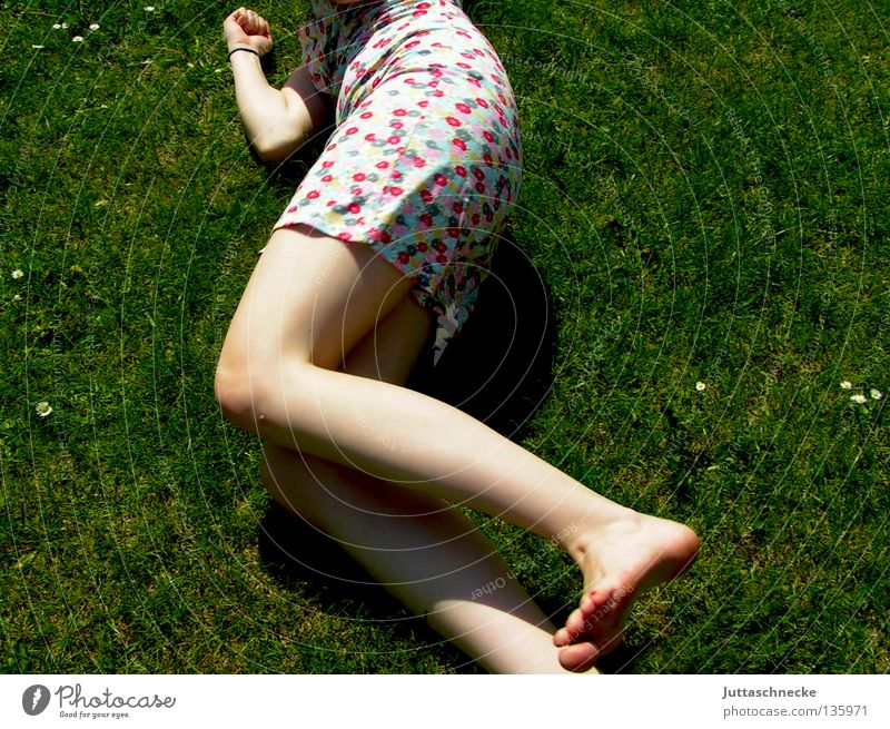 It´s the Age of Aquarius Woman Grass Meadow Summer Summer dress Flower Fatigue Relaxation To enjoy Harmonious Pleasant Peace Happiness Joy Lie lie around