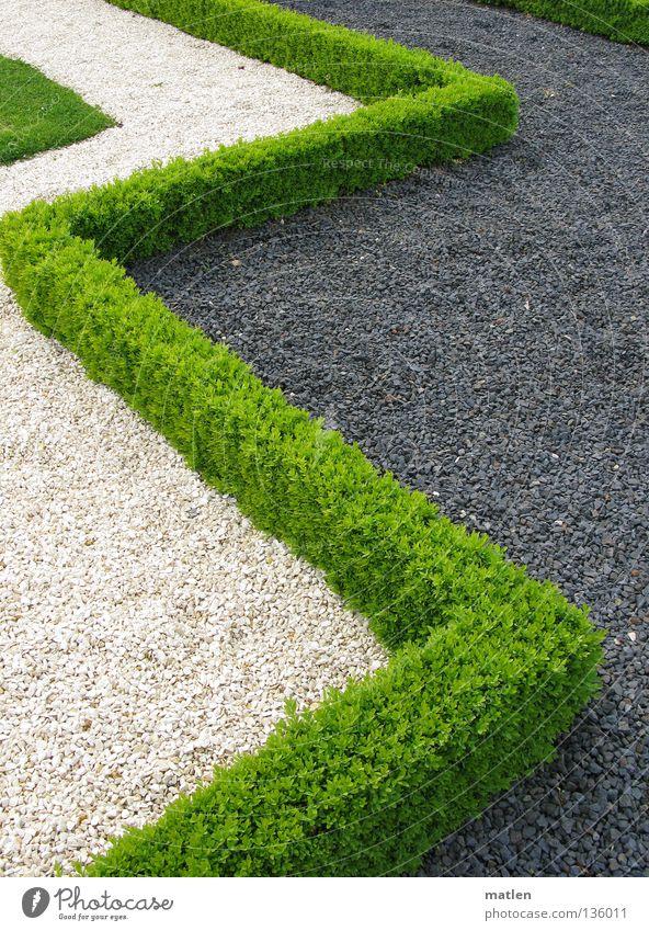 White Green Garden Gray Park Corner Gravel Hedge