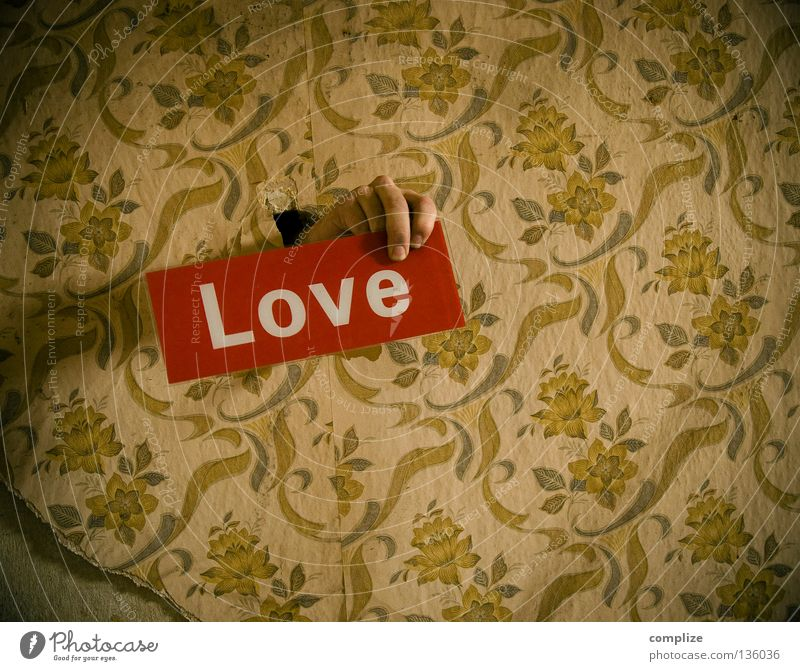 love in the 50´s Club Handyman Produce To wallpaper Craftsperson Craft (trade) Home improvement Brothel Hotel Deluxe Redecorate Redevelop Love Affection Repair