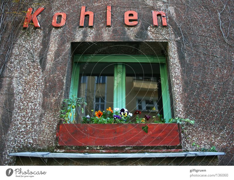 Koh|le [f.]: [mostly Pl.; ugs.] Money; that make ~n; K. Yield Work and employment Heat House (Residential Structure) Window Flower Window box Inscription