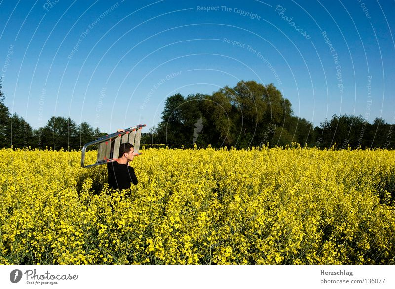 Man Yellow Stone Sand Metal Field Dirty Construction site Silver Ladder Odor Construction worker Canola Bucket Shovel