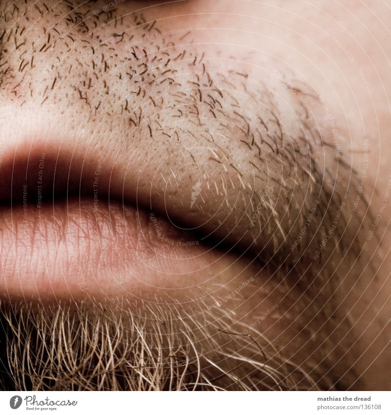 SHAVING NECESSARY Lips Lower lip Upper lip Furrow Pink Red Soft Kissing Slaver Facial hair Long Unshaven Shave Man Masculine Authentic Scratch Rasping