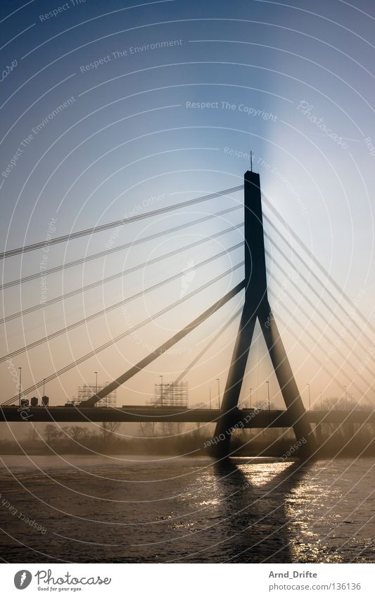 fog bridge Morning Fog Vail Winter Cold Transport Waves Light Town Bridge River Brook Water Rhine Duesseldorf Car Shadow Modern Architecture