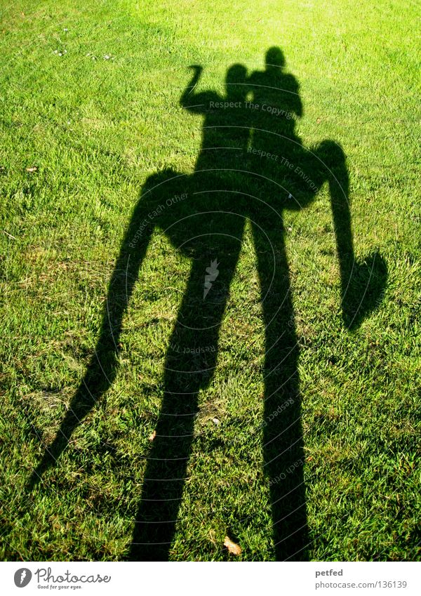 Egyptian Dance Meadow Grass Light Green Black Bend Stoop Under Narrow Long Obscure Human being Shadow Sun Joy Funny Nature Life fun Legs Arm Above Exterior shot
