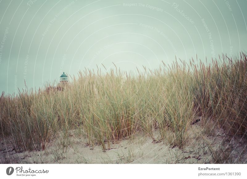 Sky Nature Vacation & Travel Plant Blue Green Landscape Beach Environment Autumn Grass Natural Coast Building Gray Weather