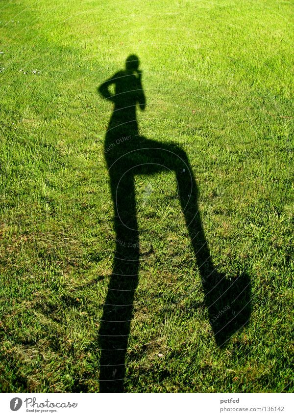 let's dance Meadow Grass Light Green Black Bend Stoop Under Narrow Long Obscure Human being Shadow Sun Joy Funny Nature Life fun Legs Arm Above Exterior shot