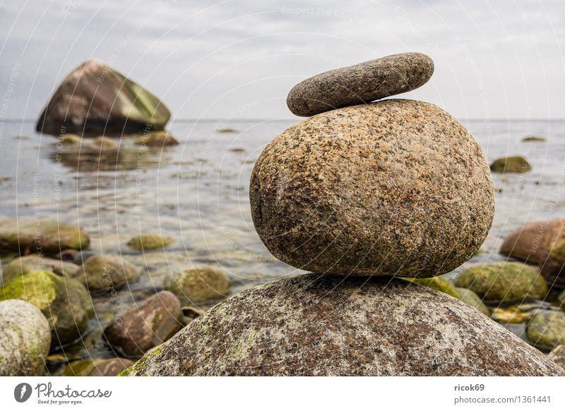 Baltic coast Relaxation Vacation & Travel Nature Landscape Rock Coast Baltic Sea Ocean Stone Calm Tourism Stone block swan stone Sky Rügen Lohme