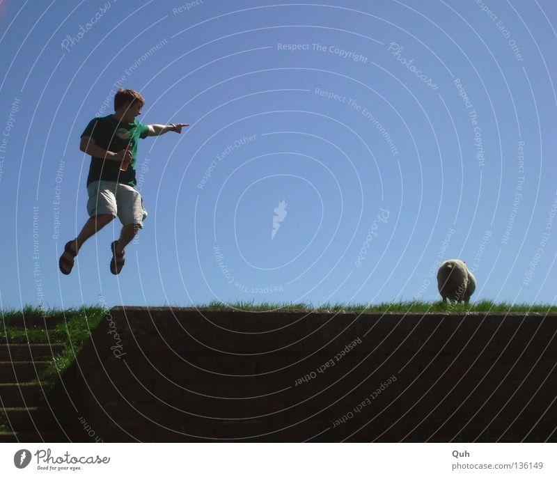 Human being Sky Man Blue Green Joy Summer Animal Meadow Grass Jump Movement Stone Coast Air Weather