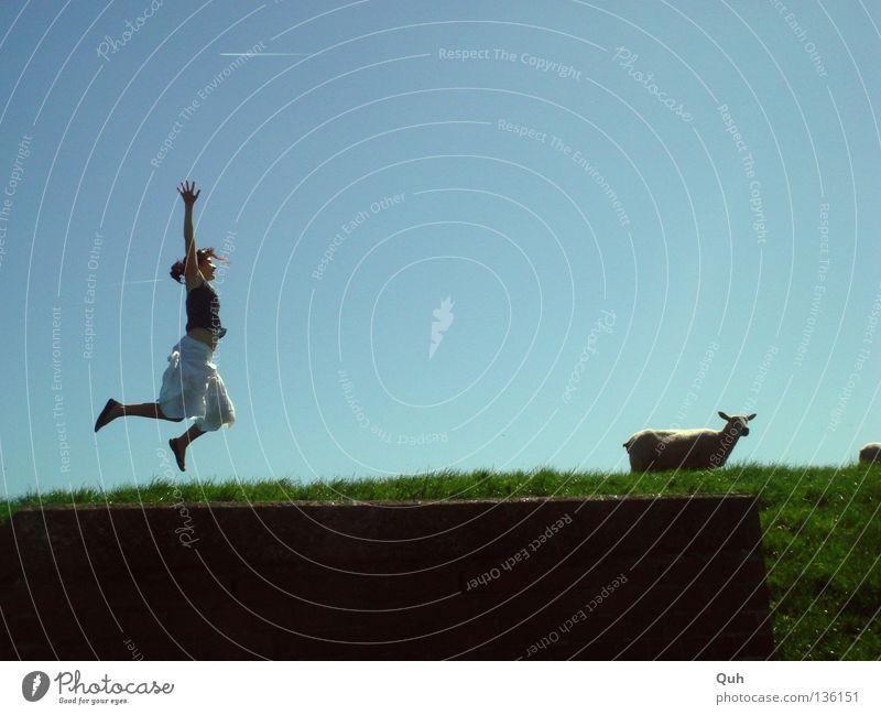 Woman Human being Sky Blue Summer Joy Animal Meadow Jump Grass Movement Funny Arm Wind Tall Lawn
