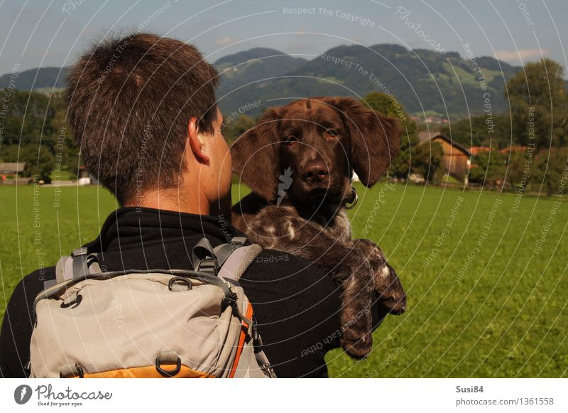 consideration Human being Masculine Back of the head 1 30 - 45 years Adults Tree Grass Meadow Pre-alpes Backpack Short-haired Pet Dog Animal face Hound