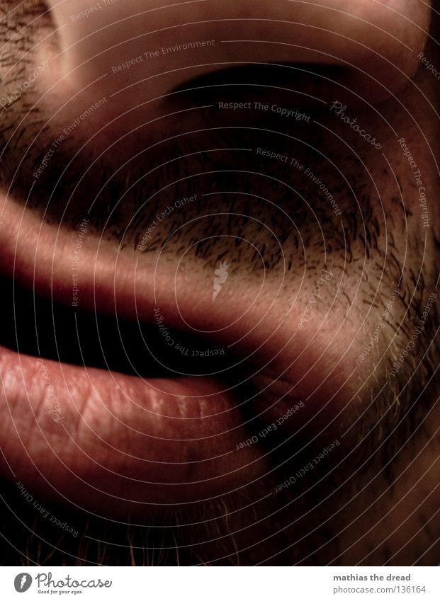 SNUT III Lips Lower lip Upper lip Furrow Pink Red Soft Kissing Slaver Facial hair Long Unshaven Shave Man Masculine Authentic Scratch Rasping Uncomfortable