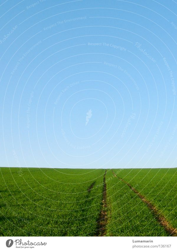 Sky Summer Far-off places Meadow Spring Grass Lanes & trails Freedom Happy Horizon Going Field Success Growth Adventure Future