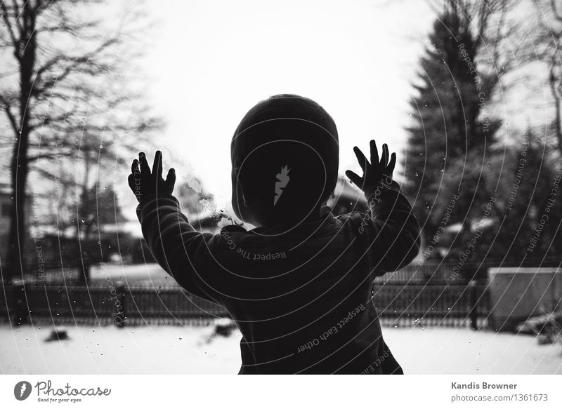 Baby looks out of window pane in winter Lifestyle Contentment Winter Snow Flat (apartment) Masculine Child Toddler Boy (child) Infancy Hand 1 Human being