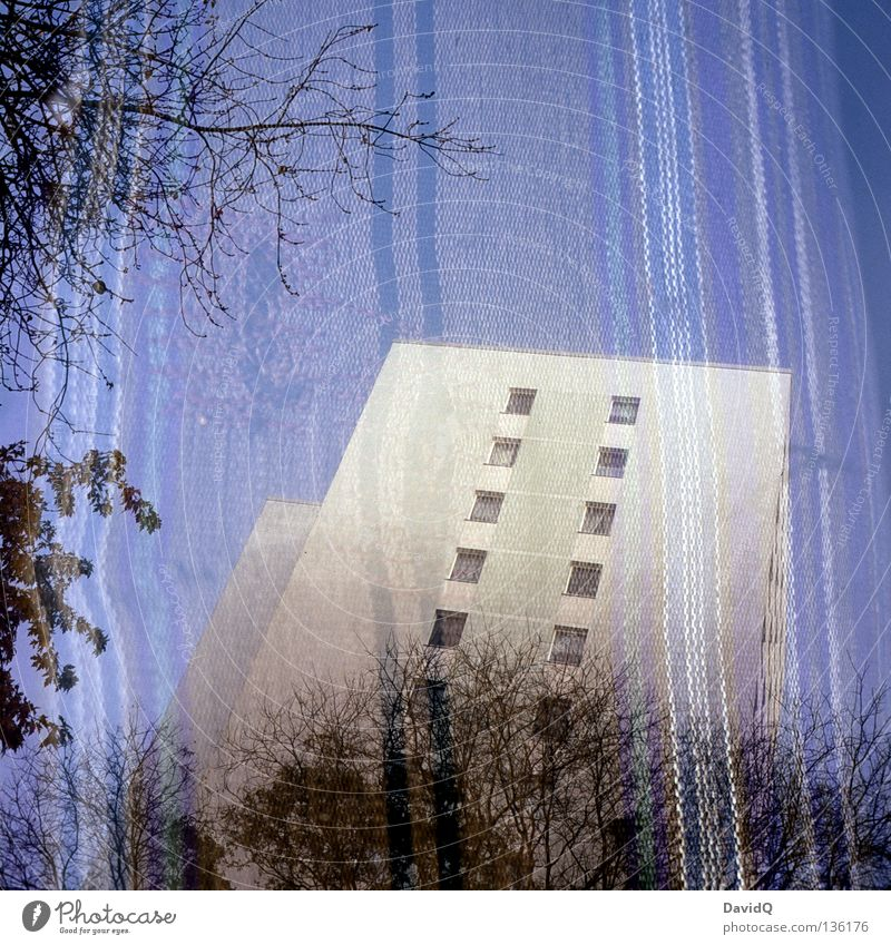 Sky Tree House (Residential Structure) Life Window Building Flat (apartment) Facade Living or residing Sofa Branch Stripe Cloth Couch Double exposure Block