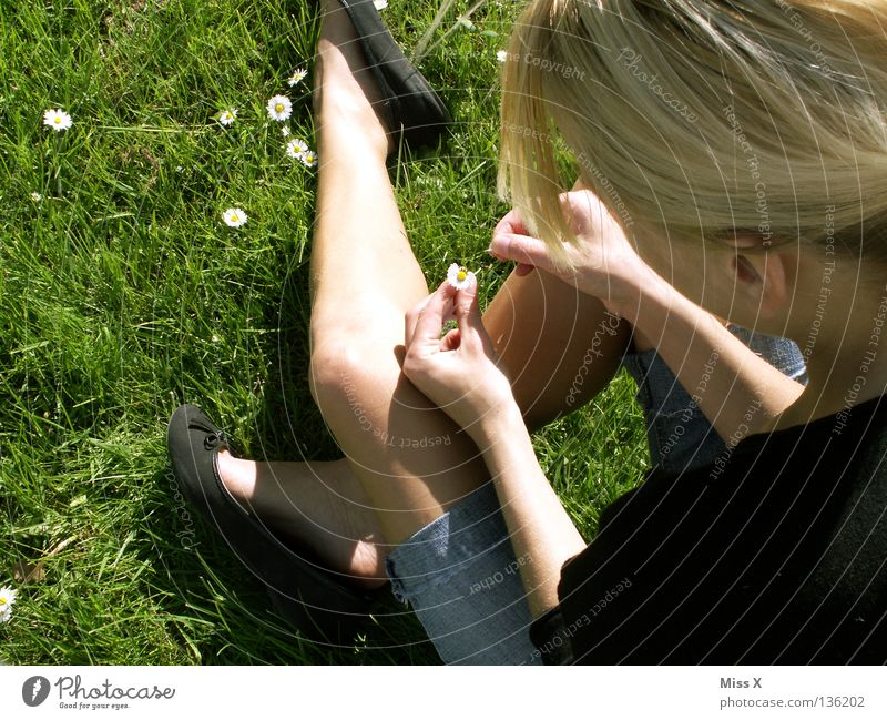 Woman Green Flower Adults Meadow Spring Grass Blossom Sadness Think Legs Dream Blonde Wait Longing Daisy