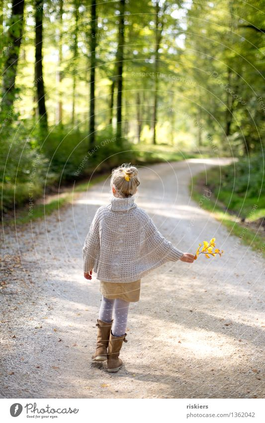 Human being Child Nature Plant Relaxation Girl Forest Environment Autumn Natural Feminine Happy Going Contentment Hiking Idyll