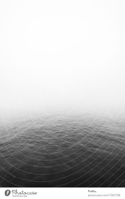 rest Elements Water Sky Autumn Weather Bad weather Fog Waves Coast Ocean Lake River Creepy Gray Calm Sadness Death Loneliness Surface of water Shroud of fog