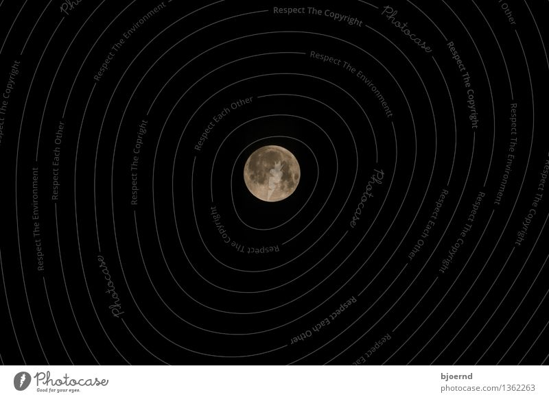 Moon over Kiel Sky Sky only Cloudless sky Night sky Full  moon Gray Black White Agreed Concern Longing Fear Subdued colour Exterior shot Deserted