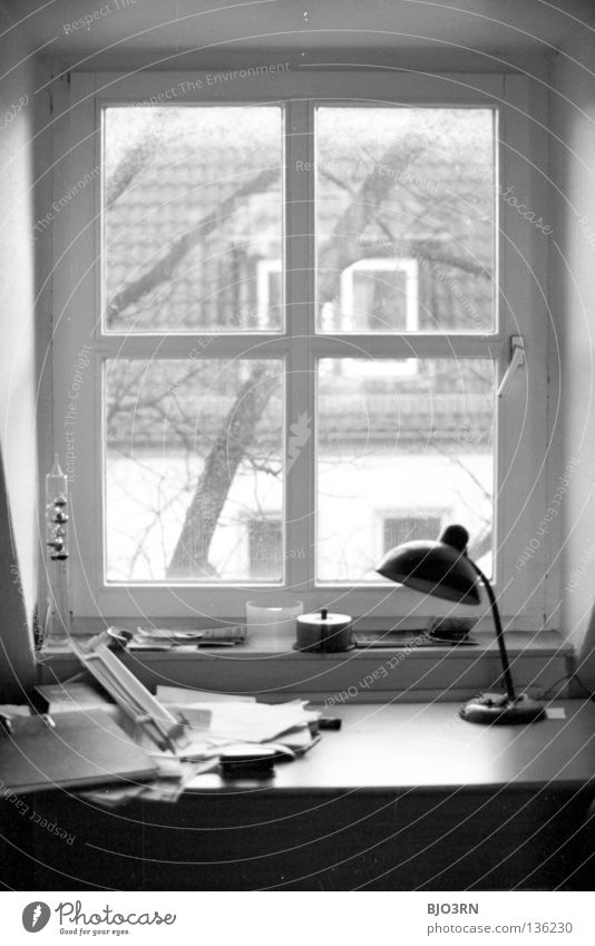 Jan's desk Portrait format Vertical Interior shot Window Table Untidy Tree Wood House (Residential Structure) view outside Desk Piece of paper Tree trunk Frame