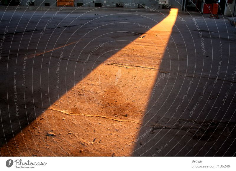 The orange-golden carpet Evening sun Sunset Celestial bodies and the universe Shadow Orange depth blur Dusk