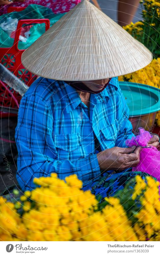 trader Plant Blue Brown Multicoloured Yellow Gold Violet Pink Red Black Sell Markets Flower Vietnamese Woman Hat Hoi An Handcrafts Colour photo Exterior shot
