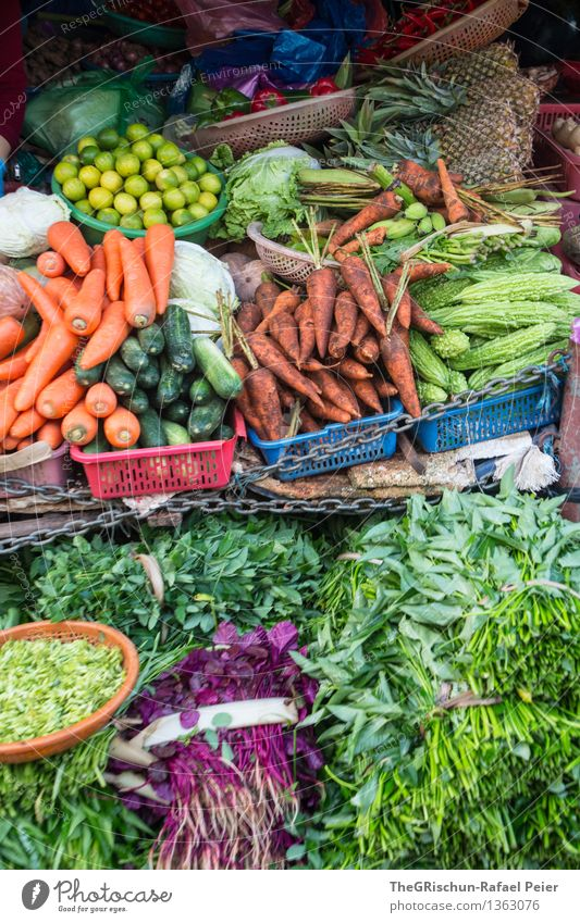 vegetable stall Food Vegetable Lettuce Salad Blue Brown Multicoloured Yellow Gray Green Violet Orange Pink Black Turquoise White Carrot Fresh Herbs and spices